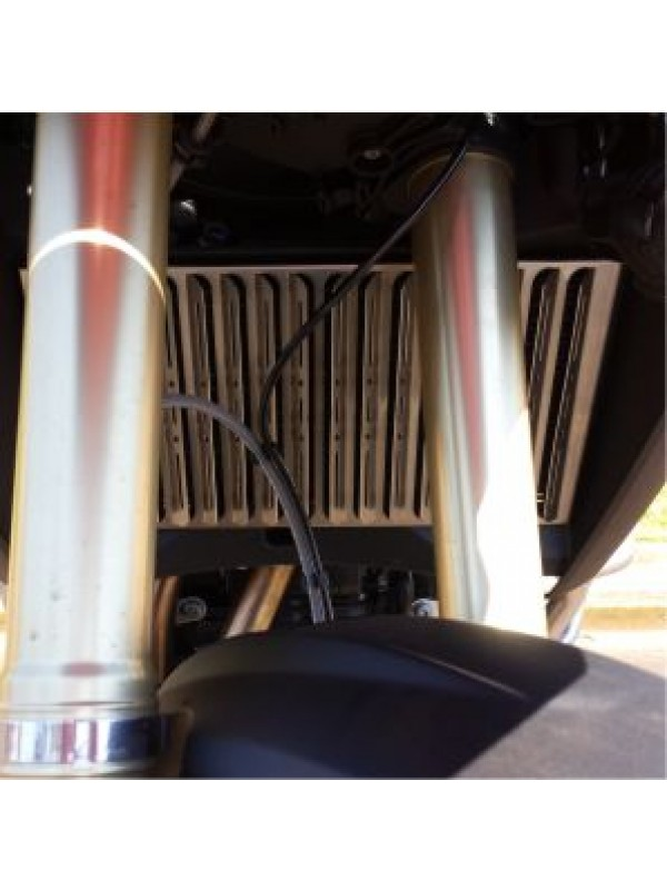 BMW F800 GSA > PROTETOR DE RADIADOR (INOX)